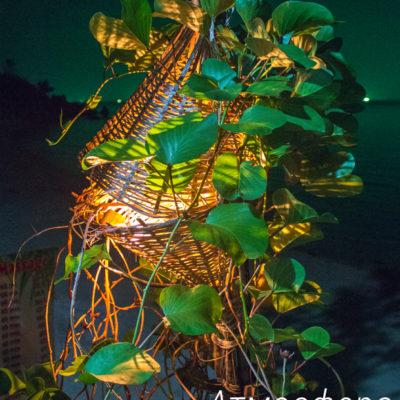 Атмосфера острова Панган (4 релиза).